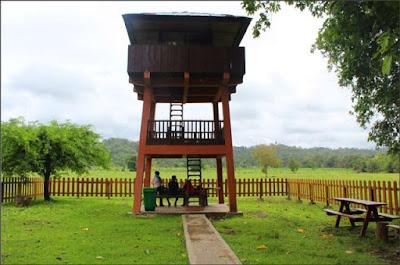 taman-nasional-alas-purwo-banyuwangi