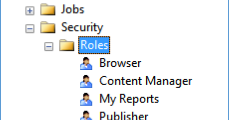 SQLCircuit: Need of Custom Role(s) in SSRS Security Model