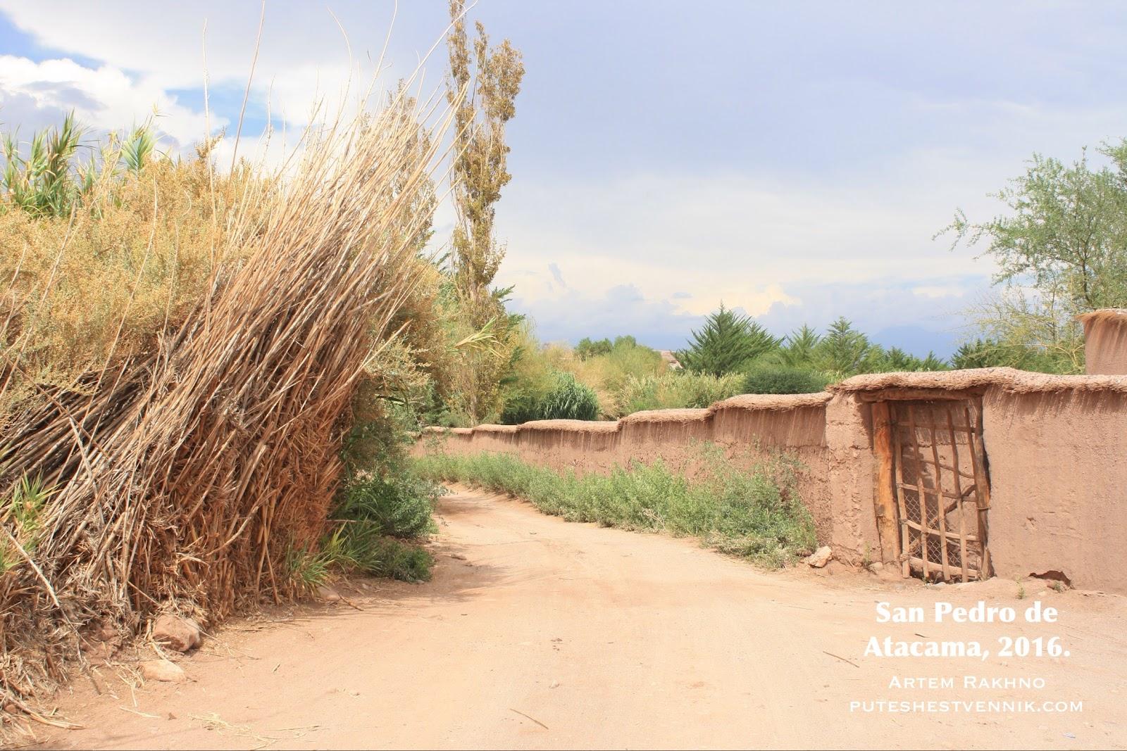 Тростник и забор в Сан-Педро-де-Атакама