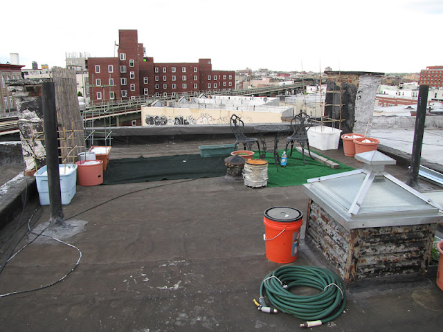 Bucolic Bushwick 2011 Rooftop Vegetable Garden