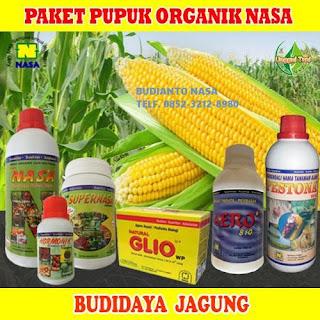 AGEN NASA DI Hatonduhan, Simalungun - TELF 082334020868