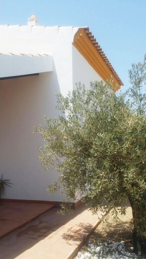 Estudio Honorio Aguilar - Promoción de viviendas aisladas en la urbanización La Pastora