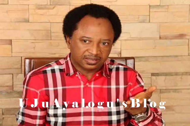 Oh No: Senator Shehu Sani's Aide Has Been Kidnapped...See Details