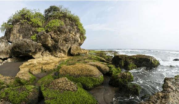 Eksotisme Pantai Madasari