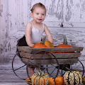Who wants pumpkin? - sesja jesienna w studio, sesja zdjęciowa Halloween