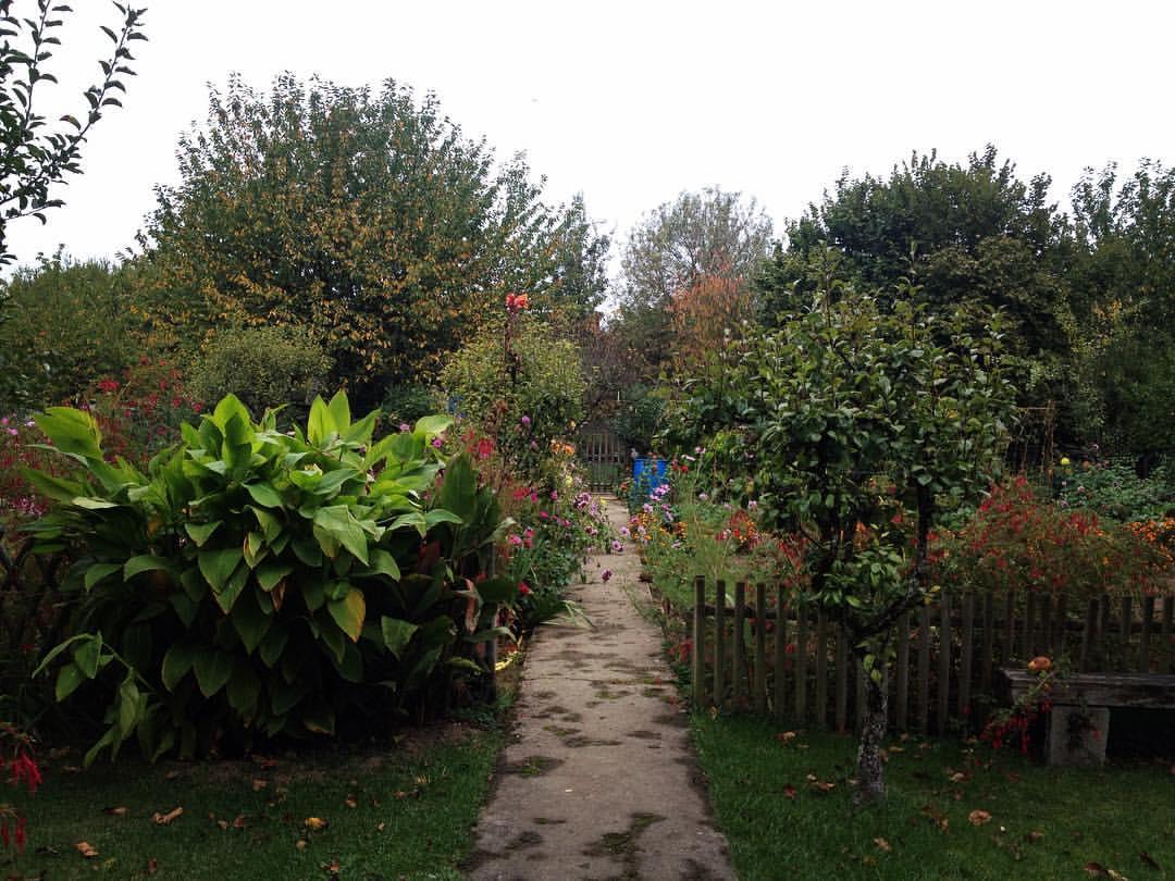 Niort, jardins