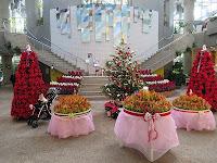 サカタのタネグリーンハウスXmasフェア~熱帯植物で彩るクリスマス~