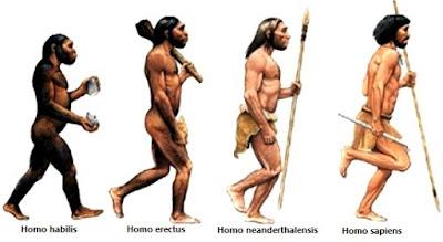 Ilustración de la Evolución del hombre o raza humana