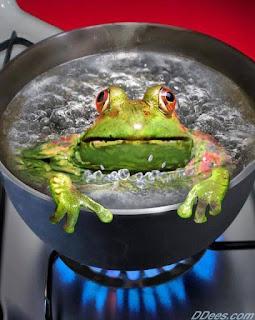 Gotowanie żaby