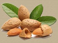 almond - la amande - Prunus dulcis