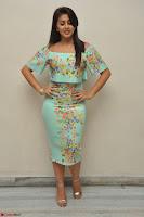 Nikki Galrani in Cute Dress Dress At Marakathamani Success Meet ~  Exclusive 017.JPG