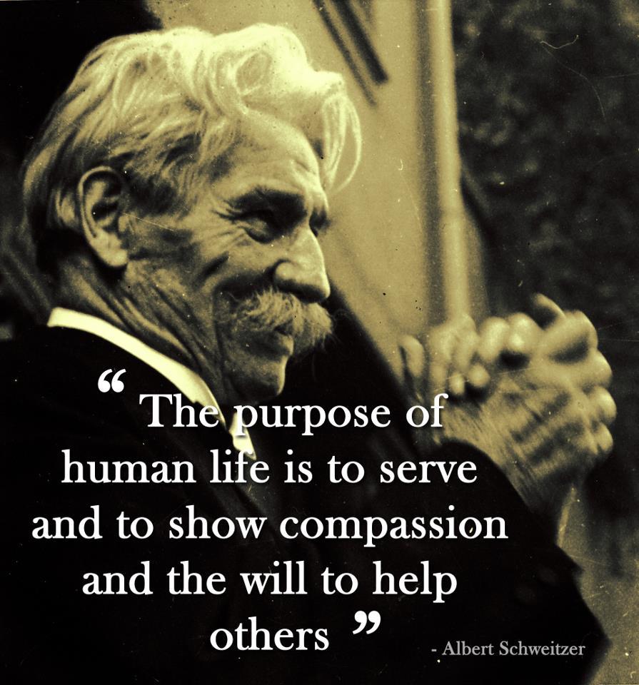 Lack Of Compassion Quotes. QuotesGram  Lack Of Compass...