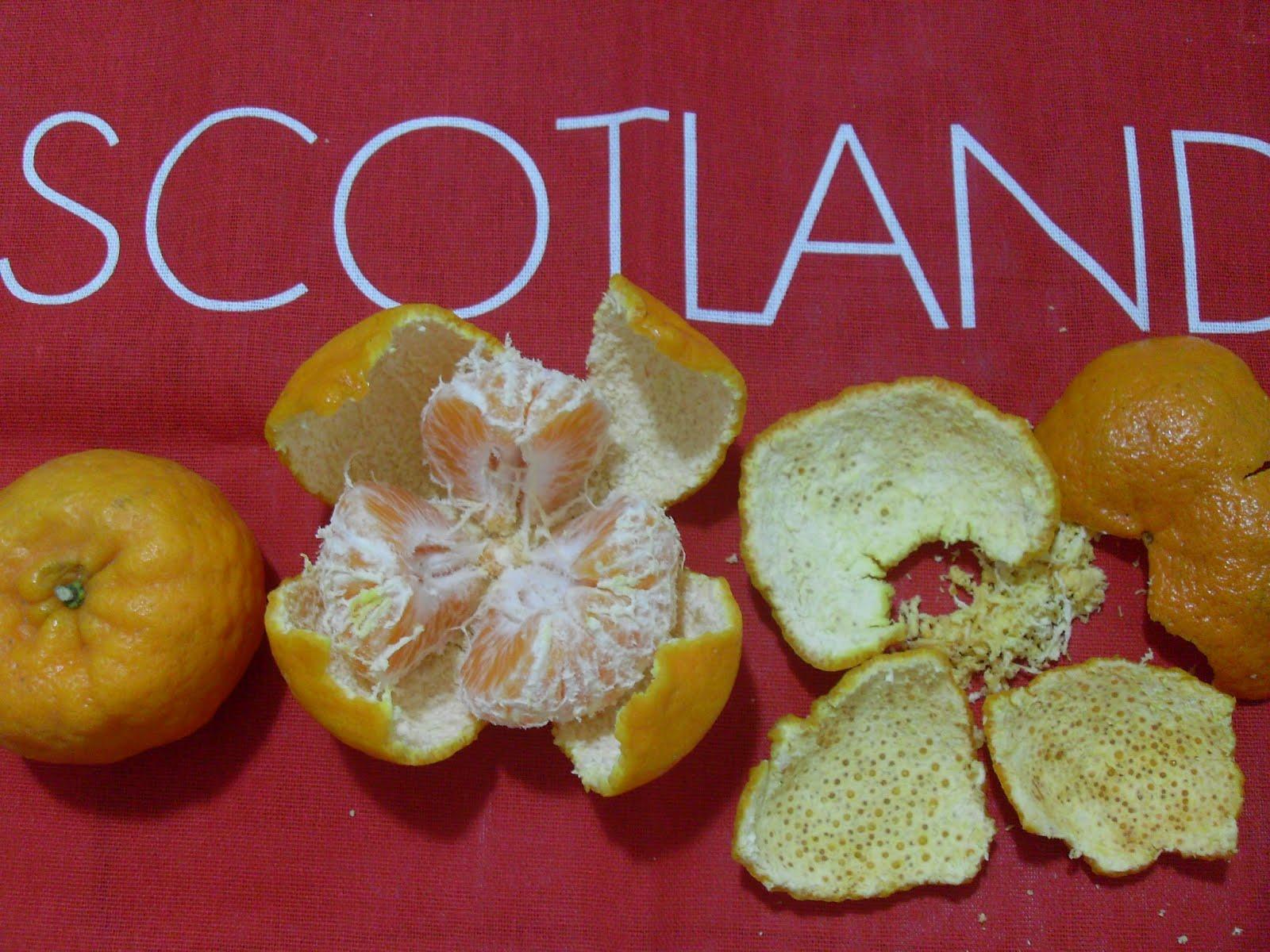 Dried Mandarin Orange Peel