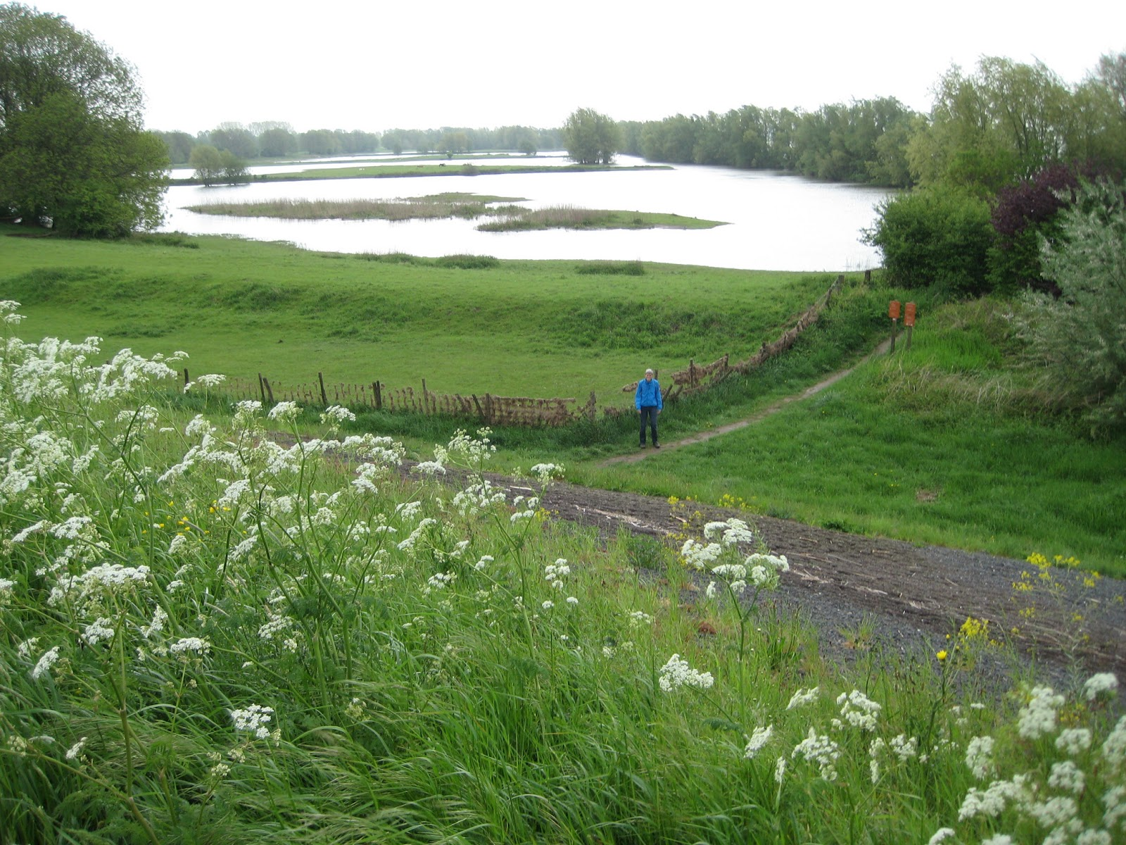 De paden op, de lanen in.: Opijnen - Wadenoijen (17 km)