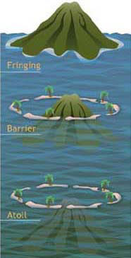 What Is A Ring Shaped Reef Called