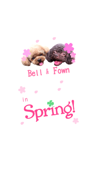 Bell&Fown in Spring!