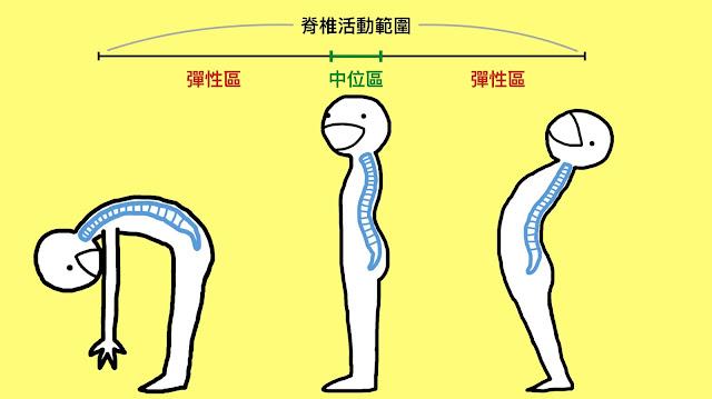 好痛痛 脊椎活動範圍 中位區 彈性區 腰痠背痛 腰酸背痛 腰痛