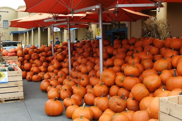 cinderella_pumpkin_many