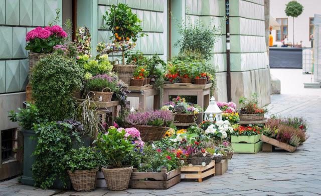 flores en el exterior de la tienda