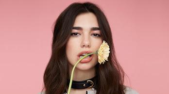 Dua Lipa, Beautiful, Sunflowers, 4K, #4.735
