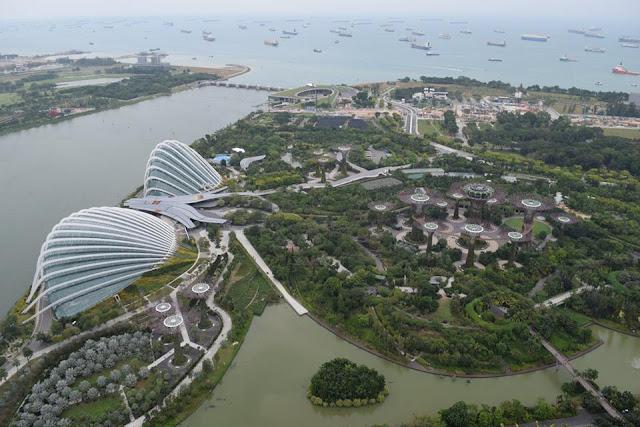 house sitting singapore