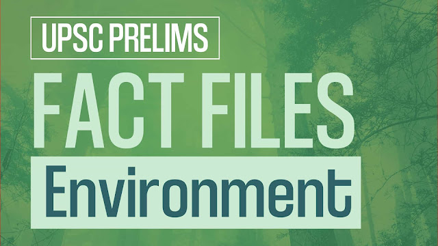 Environment Act and Policies 2020