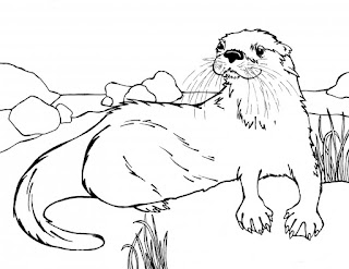 Wild Sea Otter Animal Coloring Page