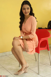 Rukshar Mir in a Peachy Deep Neck Short Dress 012.JPG