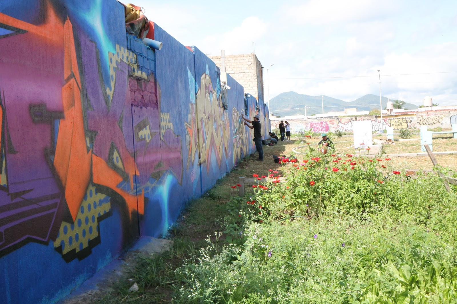 Mos Mexico 2017 A Performance Of Graffiti S Multiplicity Caitlin Frances Bruce Phd