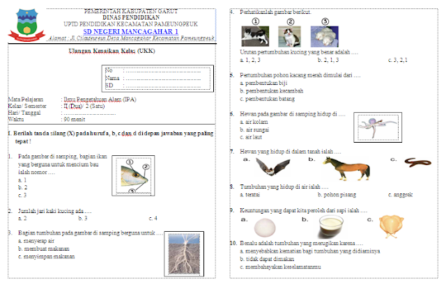 Soal UKK IPA Kelas 2 SD