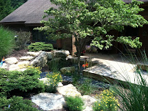 Apex Landscape Backyard Makeover