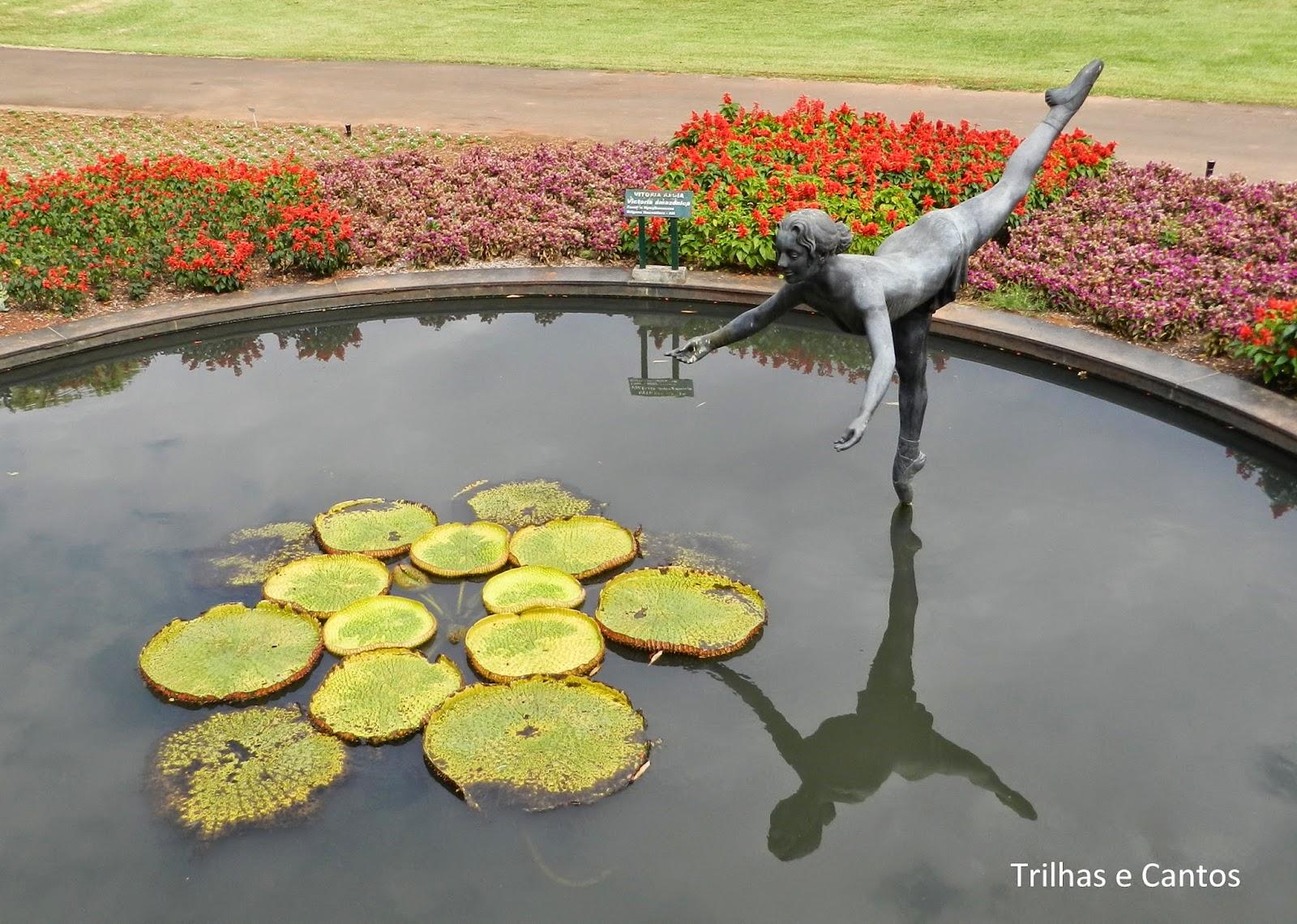 Jardim Botânico Nova Odessa
