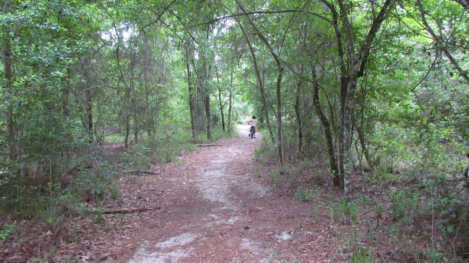 project pragmatizo: Rockport, Lake Texana, Houston and ...