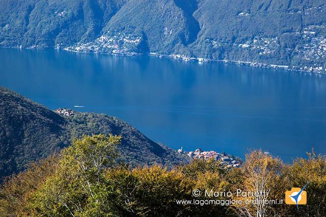 Pino e il lago Maggiore