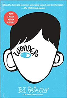 Wonder is a great chapter book for any upper elementary classroom for a read-aloud at the beginning of the school year (or anytime) to help develop a positive classroom community.