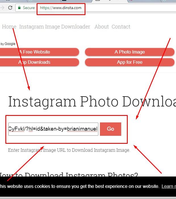 Membuka Situs Dinsta Untuk Save Foto IG