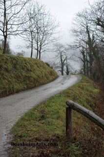 Foggy walk in Tuscany, Italy naken trees in winter road curving