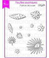 http://www.4enscrap.com/fr/les-matrices-de-coupe/765-feuilles-exotiques-4002061602250.html