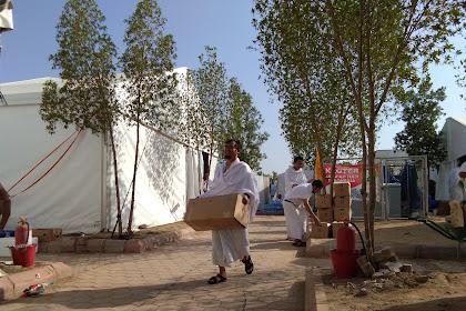 Catatan Haji # 9: Syahdunya Wukuf di Arafah