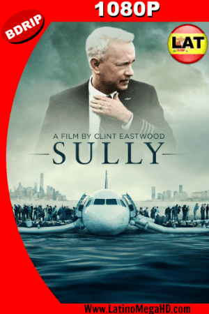 Sully, Hazaña en el Hudson (2016) Latino HD BDRIP 1080P ()
