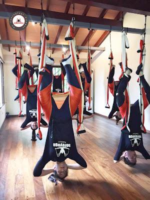 aero yoga teacher training