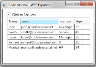 Expanded WPF Expander with style and DataGrid inside of it