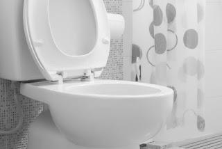 Consejos para desatascar un inodoro