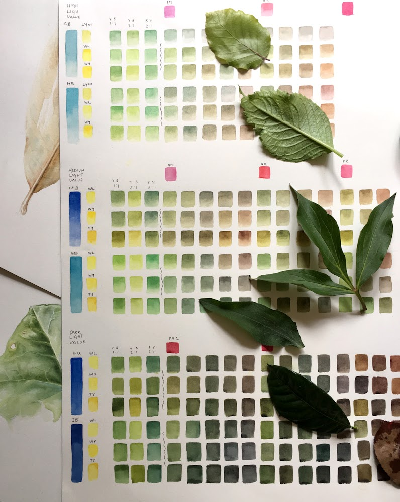 A green and brown colour chart with leaves