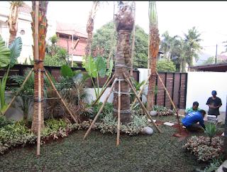 Galeri Taman - Tukang Taman Surabaya 05