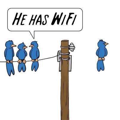 Funny Bird Picture - He has WiFi