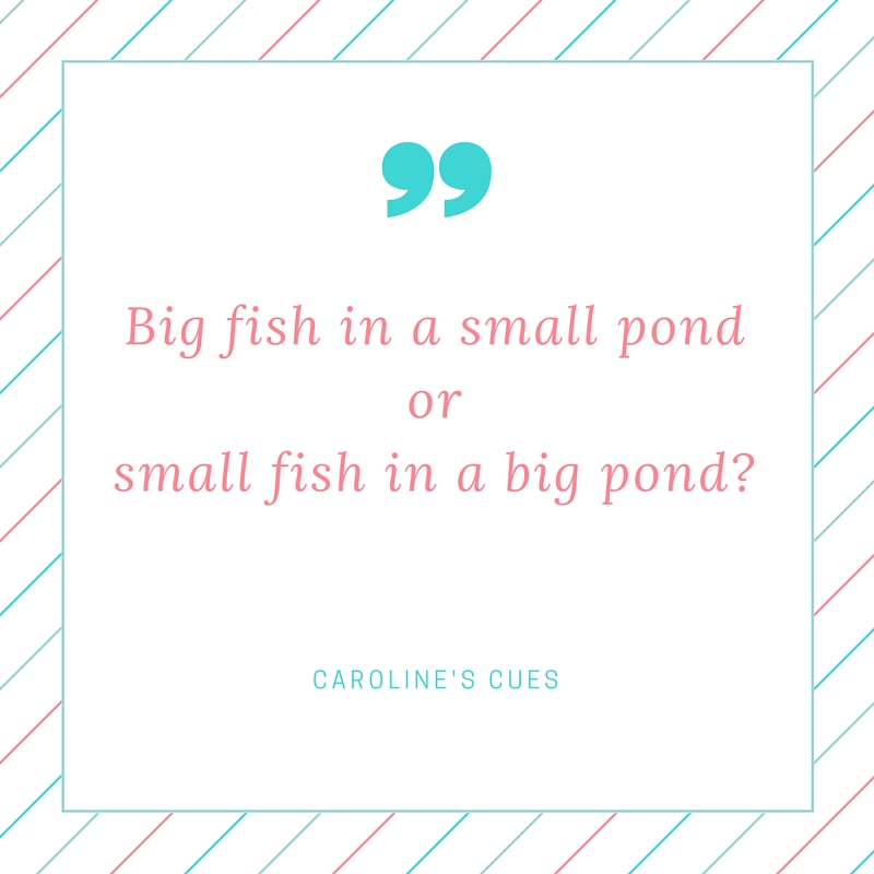 Caroline 39 s cues big fish in a small pond or small fish in for Be a big fish in a small pond