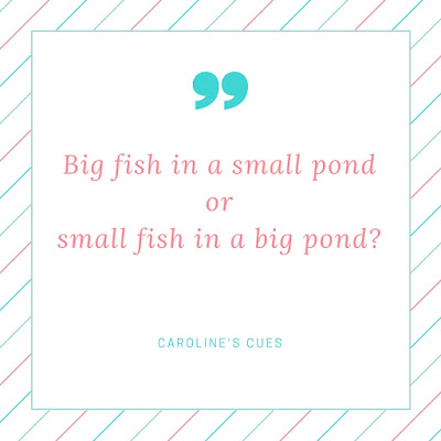 Caroline's Cues | Big fish in a small pond or small fish in a big pond?