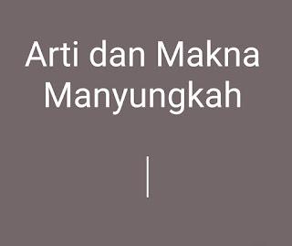Arti dan Makna Kata Manyungkah Dalam Bahasa Minangkabau