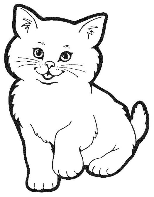 Imagenes De Muchos Animalitos Para Colorear Dibujos Para Ninos